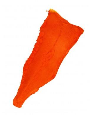 Peau orange vitaminé Extra